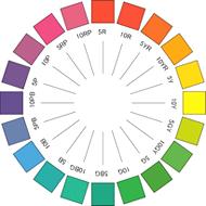 色から考える